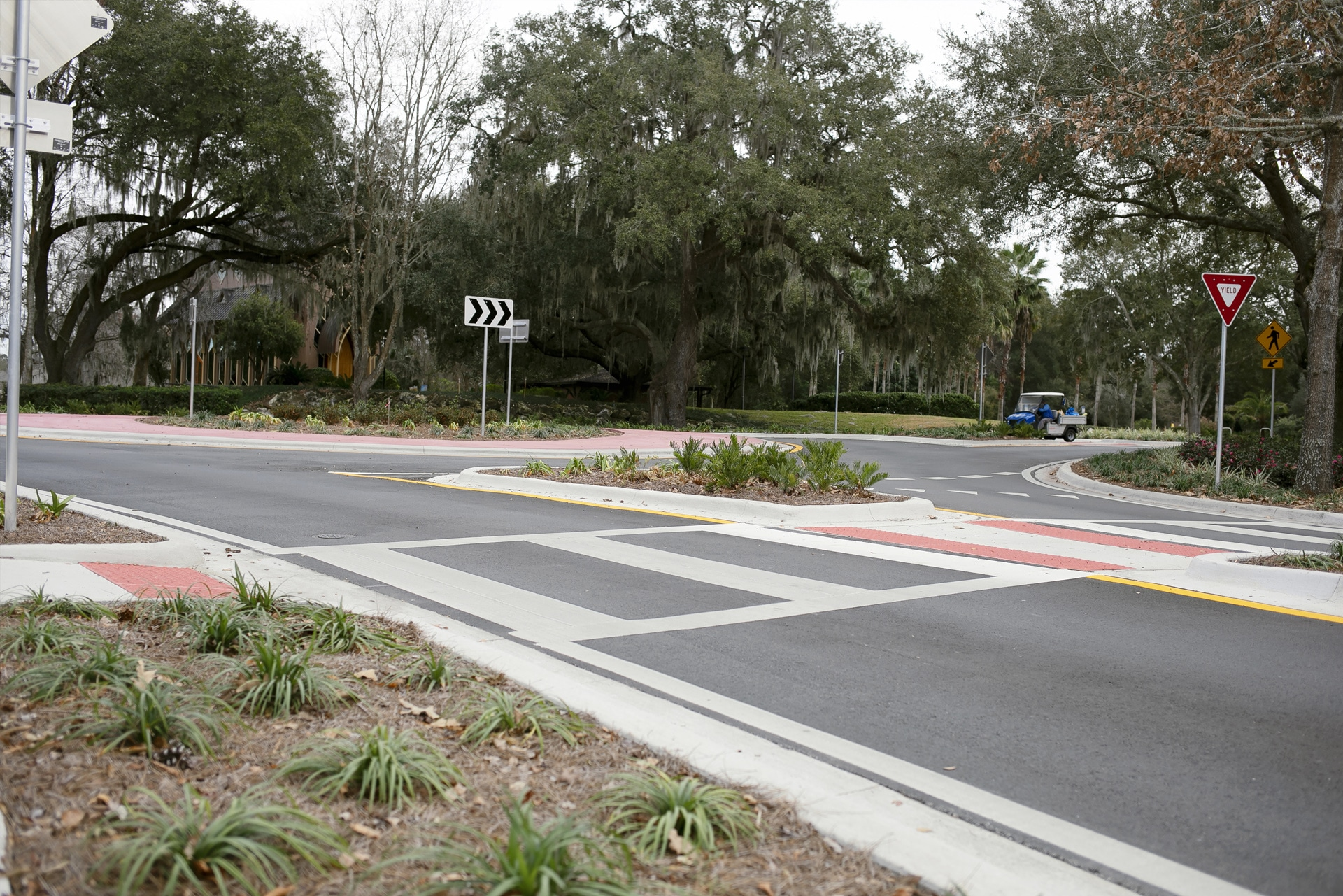 Roundabout at intersection of Radio Road and Museum Drive in Gainesville FL