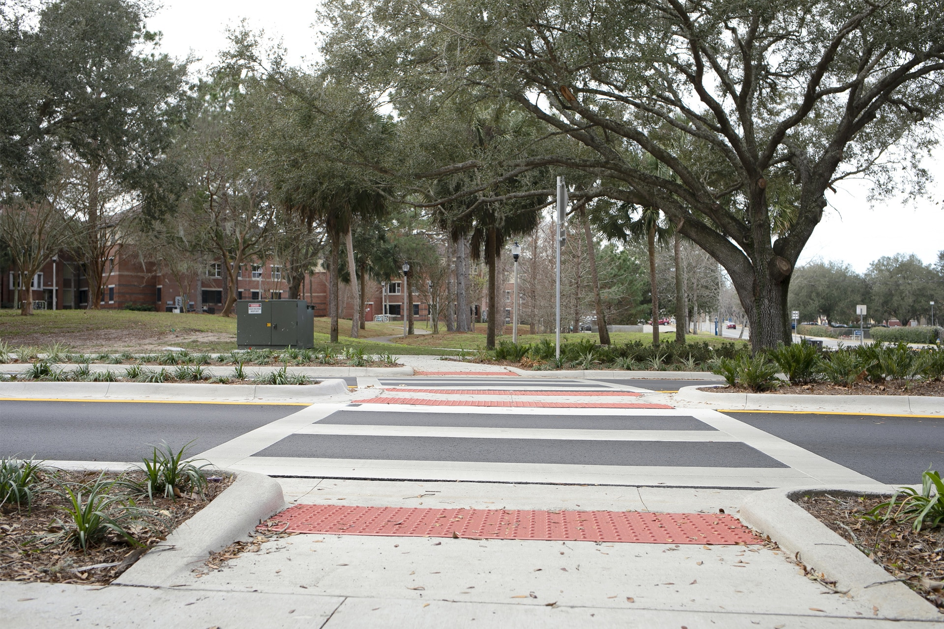 crosswalk at intersection of Radio Road and Museum Drive in Gainesville FL