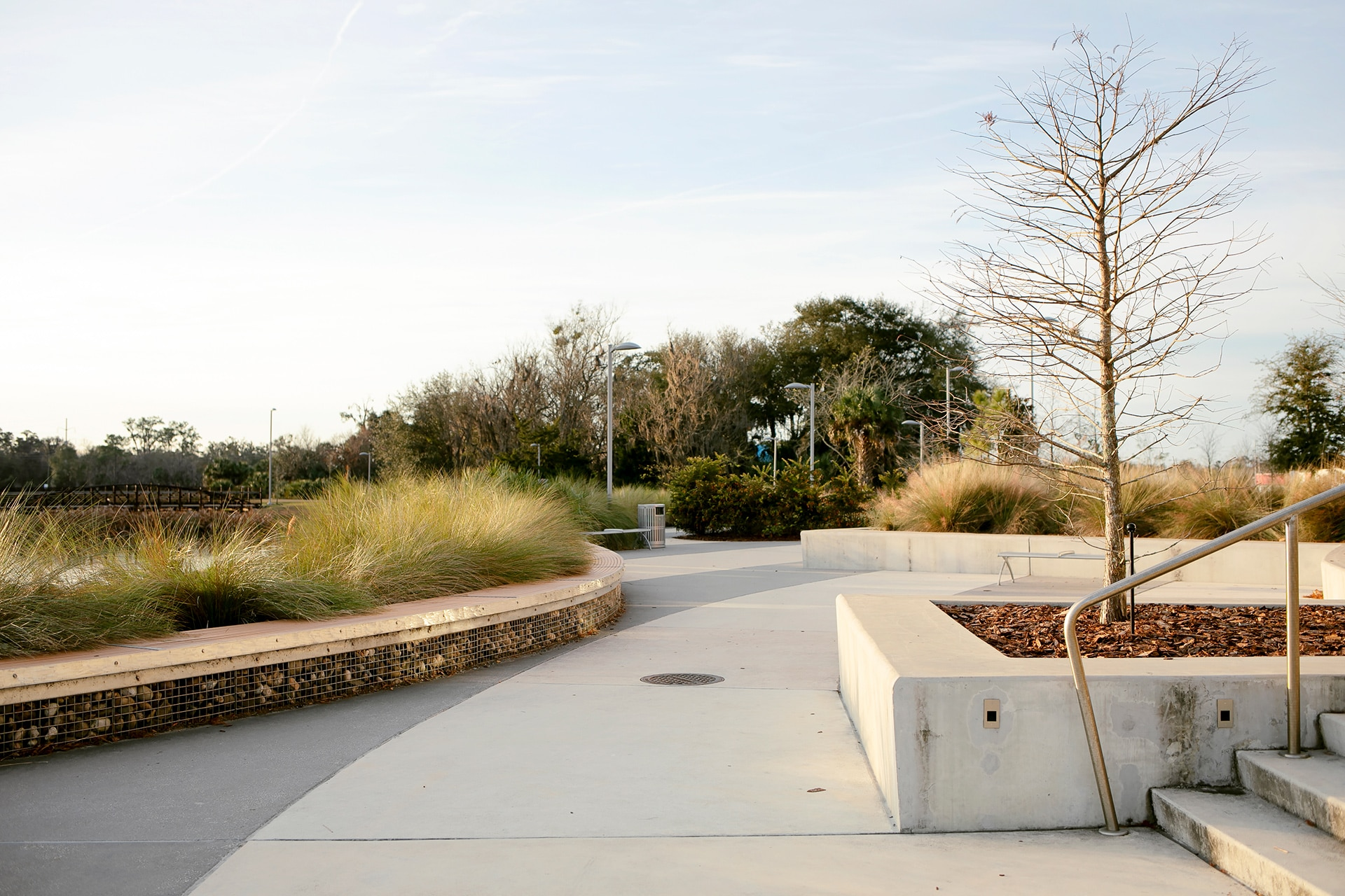 View of a concrete walkway with stairs and planters.